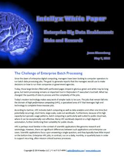 Enterprise Big Data Enablement: Risks & Rewards